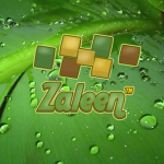 Zaleen