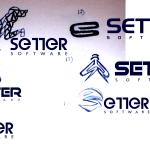 Setter 2
